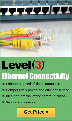 Level3 Ethernet is secure and reliable internet that enhances the speed of data communication.